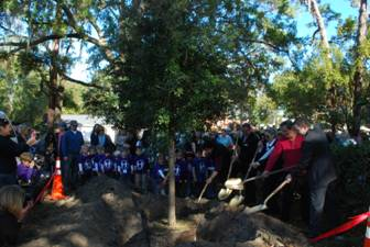 Figure 4: Arbor Day Tree Planting in Windermere