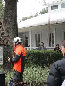 Tree Climbing talk and demo