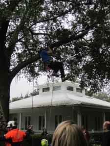 Tree Climbing Demo
