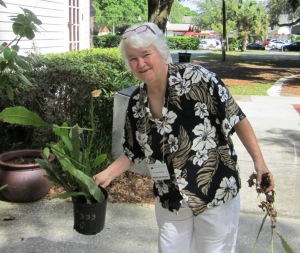 "Member Denise H. shopping at our ""white elephant's plant section."