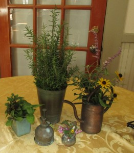 Lovely plants from Vicki H.'s yard for the beverage table.